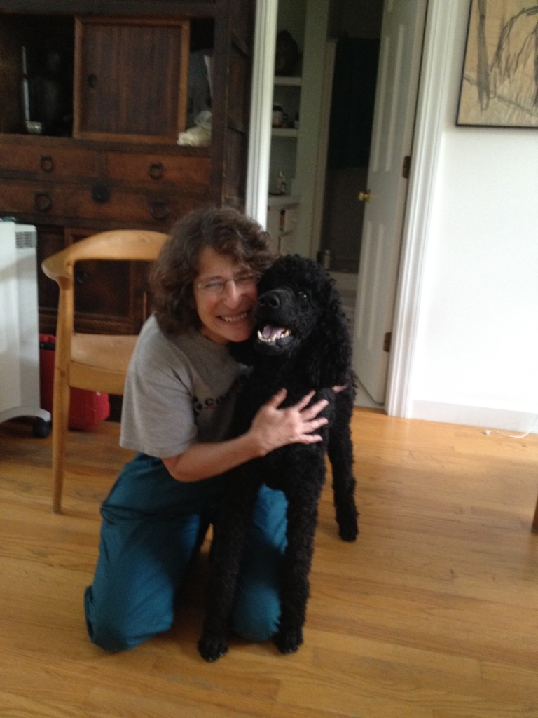 All Life Matters: Companion Animal Sitting