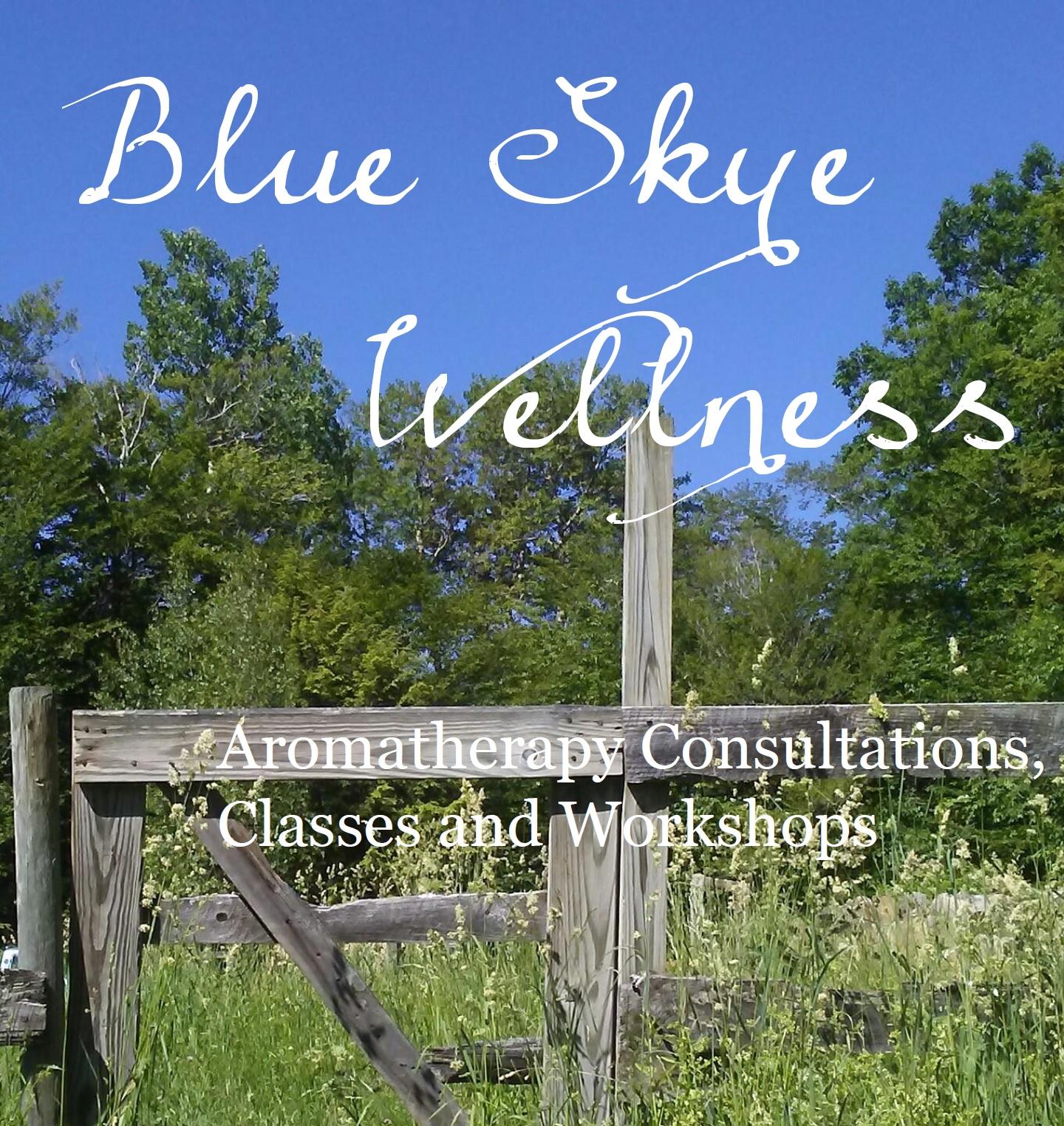 Blue Skye Wellness LLC