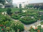 Hilltown Tree & Garden, LLC
