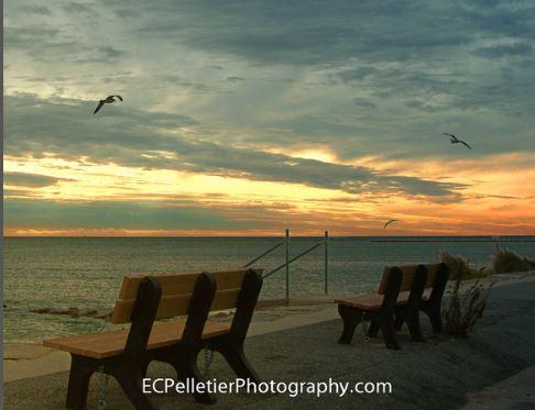 Edward Pelletier Photography
