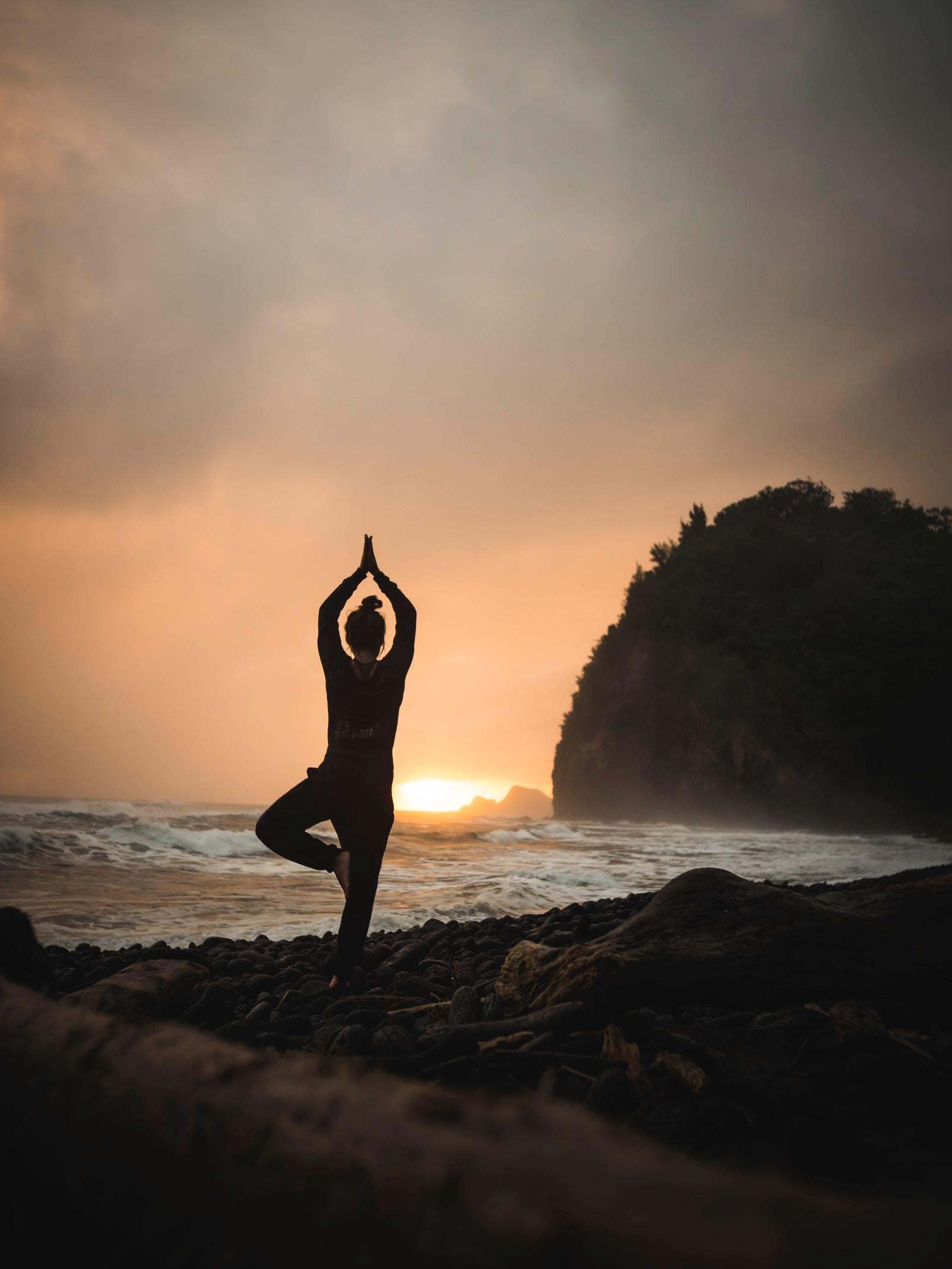 Sunflower Yoga & Mindfulness