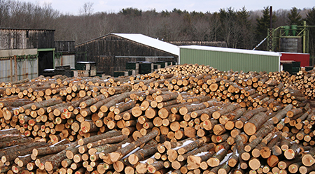 Hull Forest Products, Inc